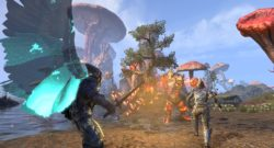 Matt Firor on Morrowind