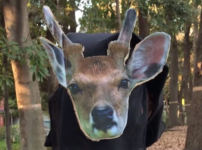 LIVE ACTION ANIMAL CROSSING POCKET CAMP 1