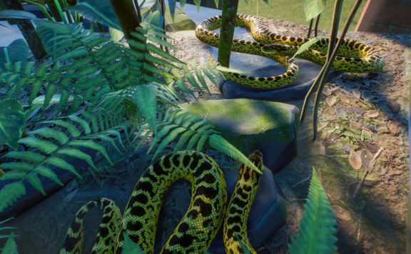 planet zoo beta