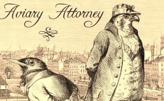 Aviary Attorney Review