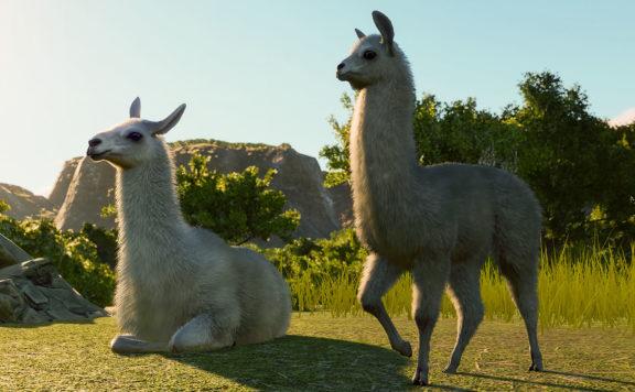 PLanet Zoo South America pack Llama