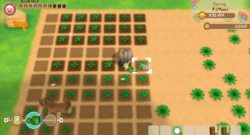 Story of Seasons: Friends of Mineral Town Preview