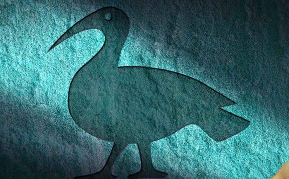 Bird-in-a-Snare-hero 1