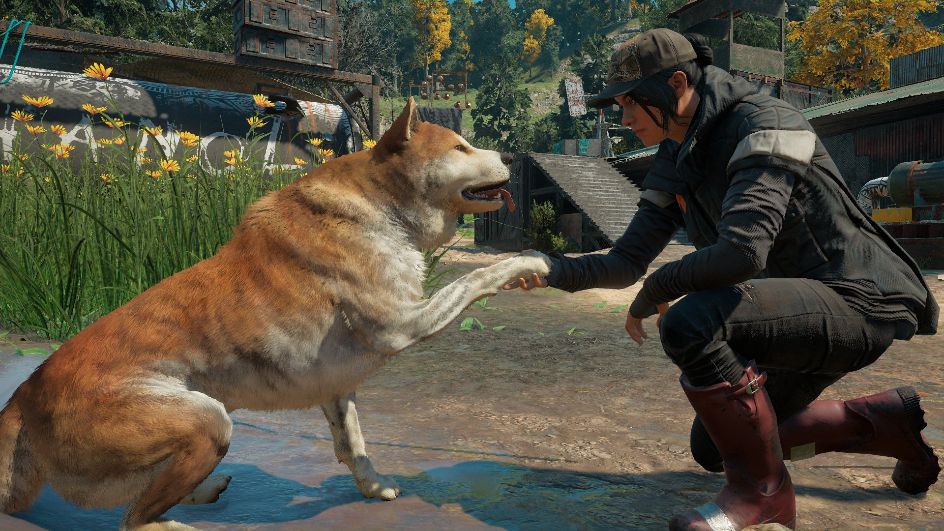 Shake a paw with Timber in Far Cry: New Dawn.