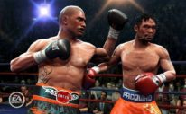 Combat Sports Video Game